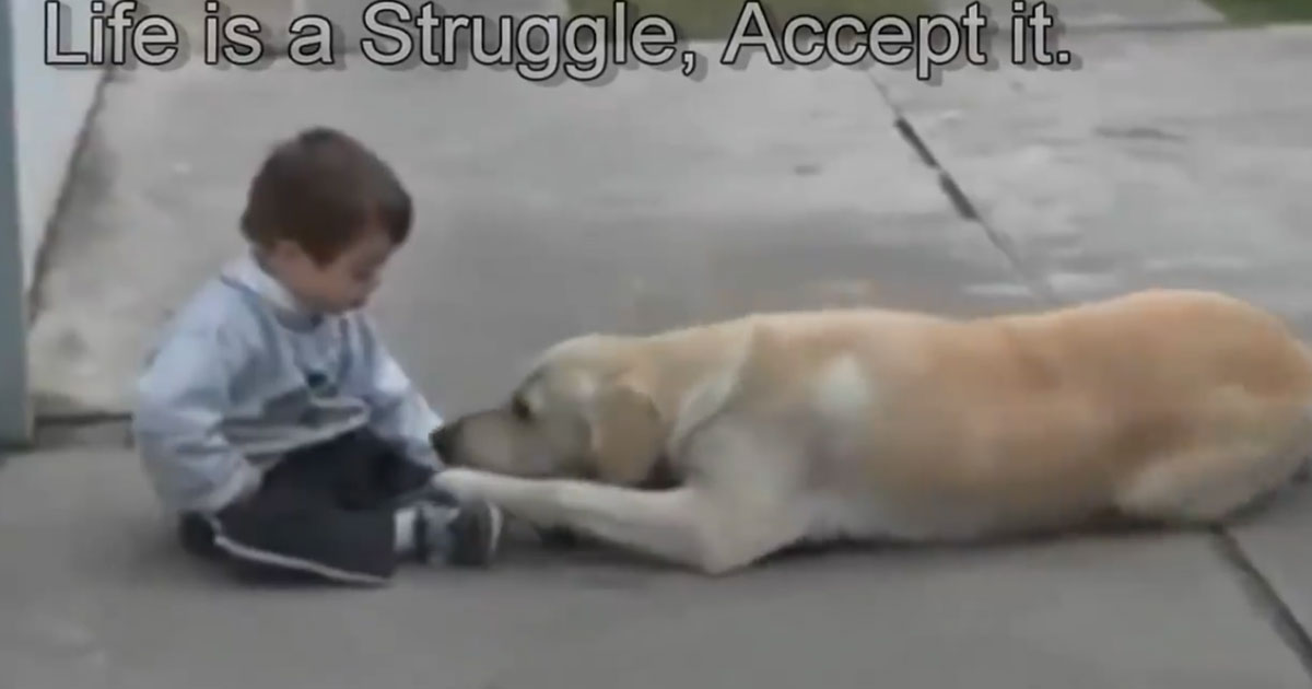 Faithful-Dog-Cuddles-Kid-Until-He's-No-Longer-Lonely
