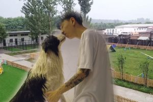 Man-Gets-Rich-Because-of-His-Celebrity-Dog,-Builds-$500,000-Mansion-for-his-Pet